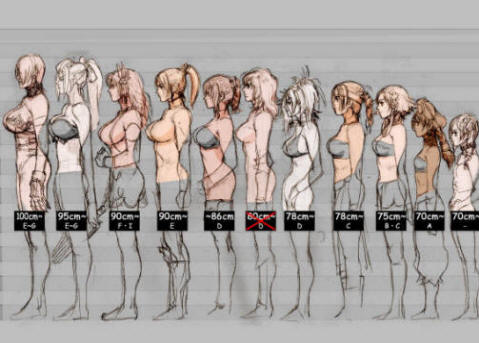 Breast Size Comparison Photos http://www.cidpusa.org/A/breastSizea.htm